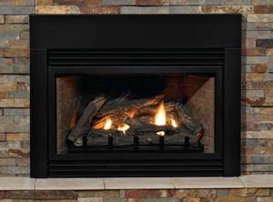 fireplaceinsert_pic